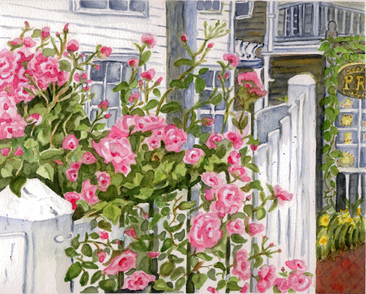 Commerce Street Roses, Provincetown