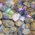 Falmouth Sea Glass