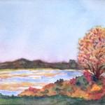 Newbury Marsh